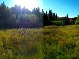 Teren de vanzare in Predeal (zona Valea Rasnoavei). Miniatura #134228 pentru oferta X31B0F.