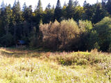 Teren de vanzare in Predeal (zona Valea Rasnoavei). Miniatura #134230 pentru oferta X31B0F.