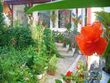 Pensiune cu 9 camere de vanzare in Busteni (zona Valea Alba). Miniatura #135945 pentru oferta X4B0A.
