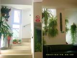 Pensiune cu 9 camere de vanzare in Busteni (zona Valea Alba). Miniatura #135958 pentru oferta X4B0A.