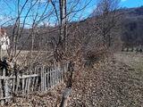 Teren de vanzare in Valea Doftanei (zona Lacul Paltinu). Miniatura #136552 pentru oferta X31B9F.
