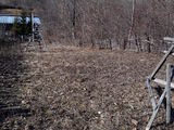 Teren de vanzare in Valea Doftanei (zona Lacul Paltinu). Miniatura #136554 pentru oferta X31B9F.