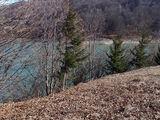 Teren de vanzare in Valea Doftanei (zona Lacul Paltinu). Miniatura #136549 pentru oferta X31B9F.