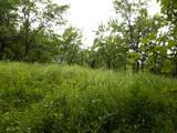 Teren de vanzare in Valea Doftanei (zona Traisteni). Miniatura #137484 pentru oferta X31BF7.