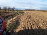 Teren de vanzare in Banesti (zona Urleta). Miniatura #138715 pentru oferta X31C64.
