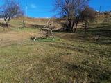 Teren de vanzare in Valea Doftanei (zona Traisteni). Miniatura #138882 pentru oferta X31C7A.