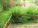 Casa cu 2 camere de vanzare in Brebu (zona Tanasica). Miniatura #139344 pentru oferta X11A91.