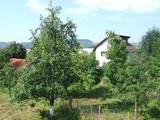 Casa cu 6 camere de vanzare in Cornu (zona Centrala). Miniatura #72493 pentru oferta X1B87.
