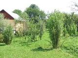 Teren de vanzare in Breaza (zona Semicentrala). Miniatura #49259 pentru oferta X33EF.