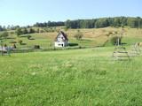Teren de vanzare in Valea Doftanei (zona Valea Neagra). Miniatura #50222 pentru oferta X3462.