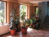 Vila cu 6 camere de inchiriat in Azuga (zona Satu Nou). Miniatura #50260 pentru oferta X2474.