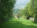 Teren de vanzare in Valea Doftanei (zona Traisteni). Miniatura #75488 pentru oferta X3C35.