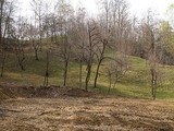Teren de vanzare in Breaza (zona Gura Beliei). Miniatura #45775 pentru oferta X3220.