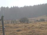 Teren de vanzare in Valea Doftanei (zona Valea Neagra). Miniatura #112722 pentru oferta X3650.