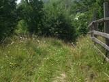 Teren de vanzare in Valea Doftanei (zona Traisteni). Miniatura #75494 pentru oferta X3C36.