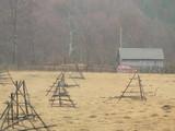 Teren de vanzare in Valea Doftanei (zona Valea Neagra). Miniatura #112723 pentru oferta X3650.