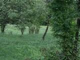 Teren de vanzare in Provita (zona Provita de Sus). Miniatura #76523 pentru oferta X36A2.