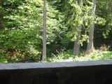 Vila cu 6 camere de vanzare in Predeal (zona Malul Ursului). Miniatura #62384 pentru oferta 209R.