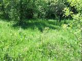 Teren de vanzare in Poiana Campina (zona Semicentrala). Miniatura #32232 pentru oferta 30HJ.