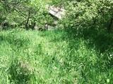 Teren de vanzare in Poiana Campina (zona Semicentrala). Miniatura #32234 pentru oferta 30HJ.