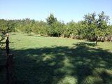 Teren de vanzare in Campina (zona Voila). Miniatura #87339 pentru oferta X3E92.