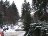 Teren de vanzare in Sinaia (zona Furnica). Miniatura #127456 pentru oferta X35B3.
