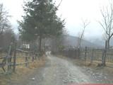 Teren de vanzare in Valea Doftanei (zona Valea Neagra). Miniatura #112725 pentru oferta X3650.