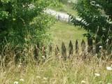 Teren de vanzare in Valea Doftanei (zona Traisteni). Miniatura #75497 pentru oferta X3C36.