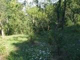 Teren de vanzare in Cornu (zona Cornu de Sus). Miniatura #92804 pentru oferta X3FE9.