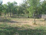Casa cu 2 camere de vanzare in Cornu (zona Semicentrala). Miniatura #93351 pentru oferta X11011.