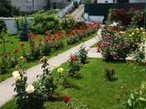 Vila cu 4 camere de vanzare in Campina (zona Semicentrala). Miniatura #99994 pentru oferta X211AE.