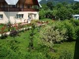 Vila cu 4 camere de vanzare in Campina (zona Semicentrala). Miniatura #99998 pentru oferta X211AE.