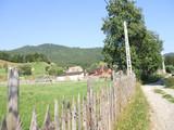 Teren de vanzare in Valea Doftanei (zona Valea Neagra). Miniatura #50227 pentru oferta X3462.
