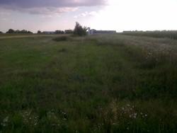 Teren de Vanzare in Baicoi (DN1, Prahova)
