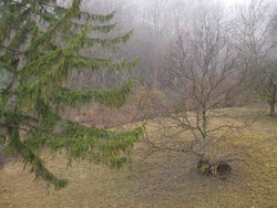 Teren de Vanzare in Valea Doftanei