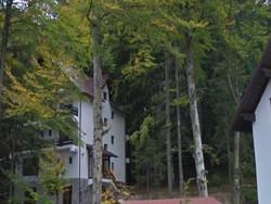 Spatiu Turistic de Vanzare in Busteni (Prahova)