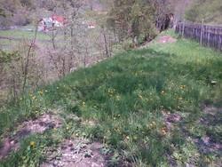 Teren de Vanzare in Valea Doftanei (Semicentrala, Prahova)