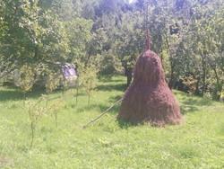 Teren de Vanzare in Breaza (Nistoresti, Prahova)