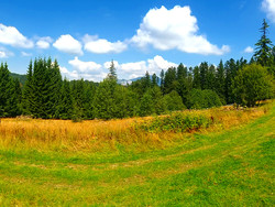 Teren de Vanzare in Predeal (Valea Rasnoavei, Brasov)
