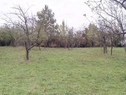 Teren Intravilan de Vanzare in Provita (Draganeasa, Prahova)