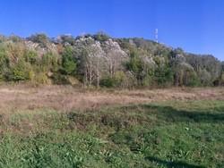Teren Intravilan de Vanzare in Cornu (DN1, Prahova)