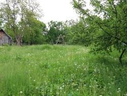 Teren Intravilan de Vanzare in Valea Doftanei (Traisteni, Prahova)