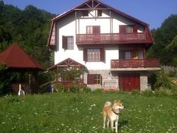Vila de Vanzare in Provita (Provita de Sus, Prahova)