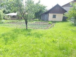 Teren de Vanzare in Cornu (Cornu de Sus, Prahova)
