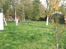 Teren de Vanzare in Breaza (Breaza de Jos, Prahova)