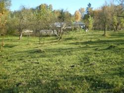 Teren de Vanzare in Breaza (Valea Tarsei, Prahova)