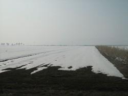 Teren Extravilan de Vanzare in Baicoi (Floresti, Prahova)