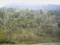 Teren de Vanzare in Telega (Zapodie, Prahova)
